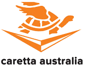caretta logo bottom